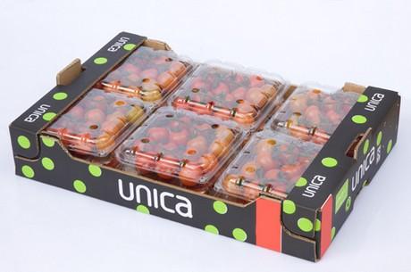 Duitsland belangrijkste markt voor tomaten uit almeria - Scandinavische coktail ...