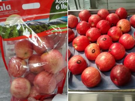 """desde Freshplaza: """"Este es un año de recuperación para las manzanas chilenas"""""""