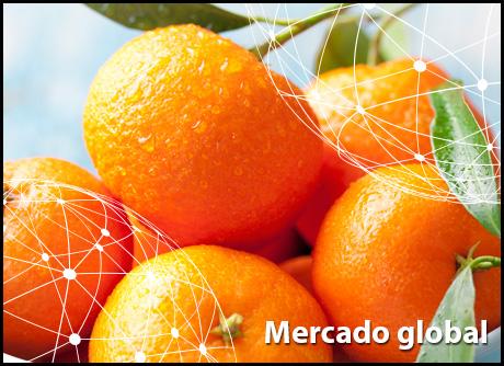 Resumen del mercado global de la mandarina cd561658123