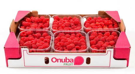 Resultado de imagen de onubafruit freshplaza frambuesas y fresas