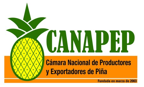 CANAPEP, 15 years of promoting pineapple production in Costa Rica