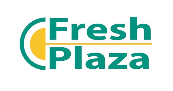 Resultado de imagen para logo fresh plaza